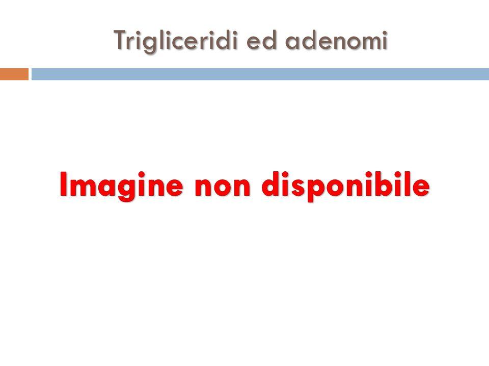 Trigliceridi ed adenomi