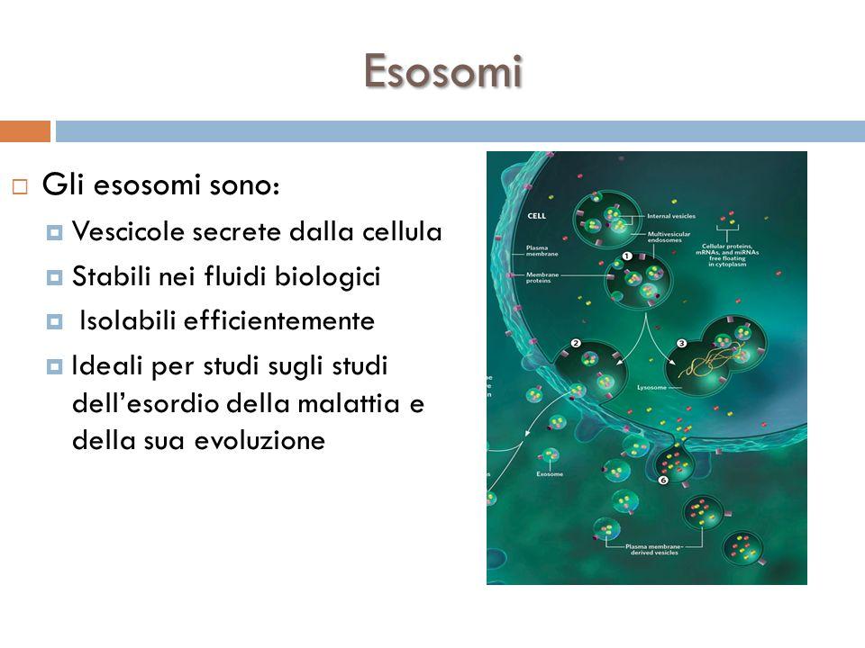 Esosomi Gli esosomi sono: Vescicole secrete dalla cellula Stabili nei fluidi biologici Isolabili efficientemente Ideali per studi sugli studi dellesor