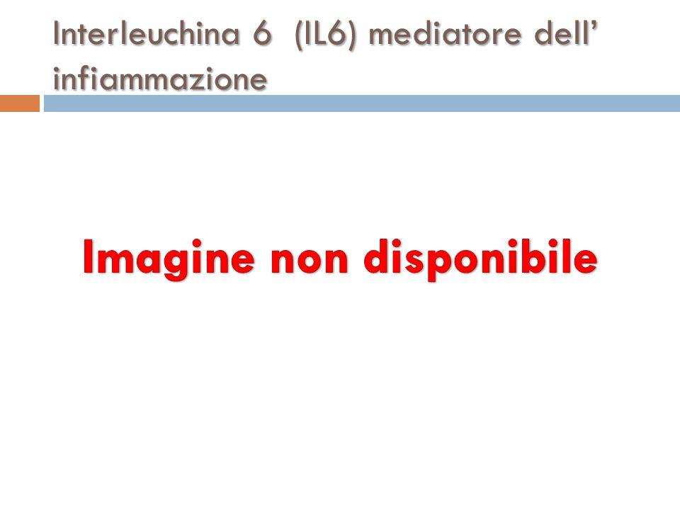 Interleuchina 6 (IL6) mediatore dell infiammazione