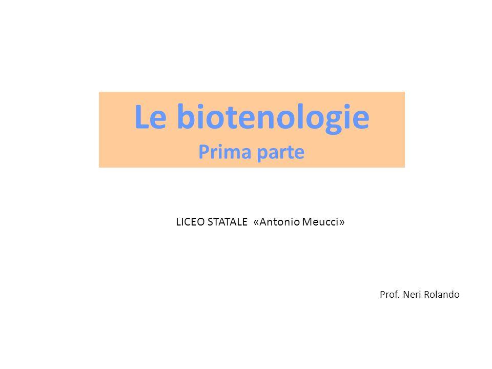 Prof. Neri Rolando Le biotenologie Prima parte LICEO STATALE «Antonio Meucci»