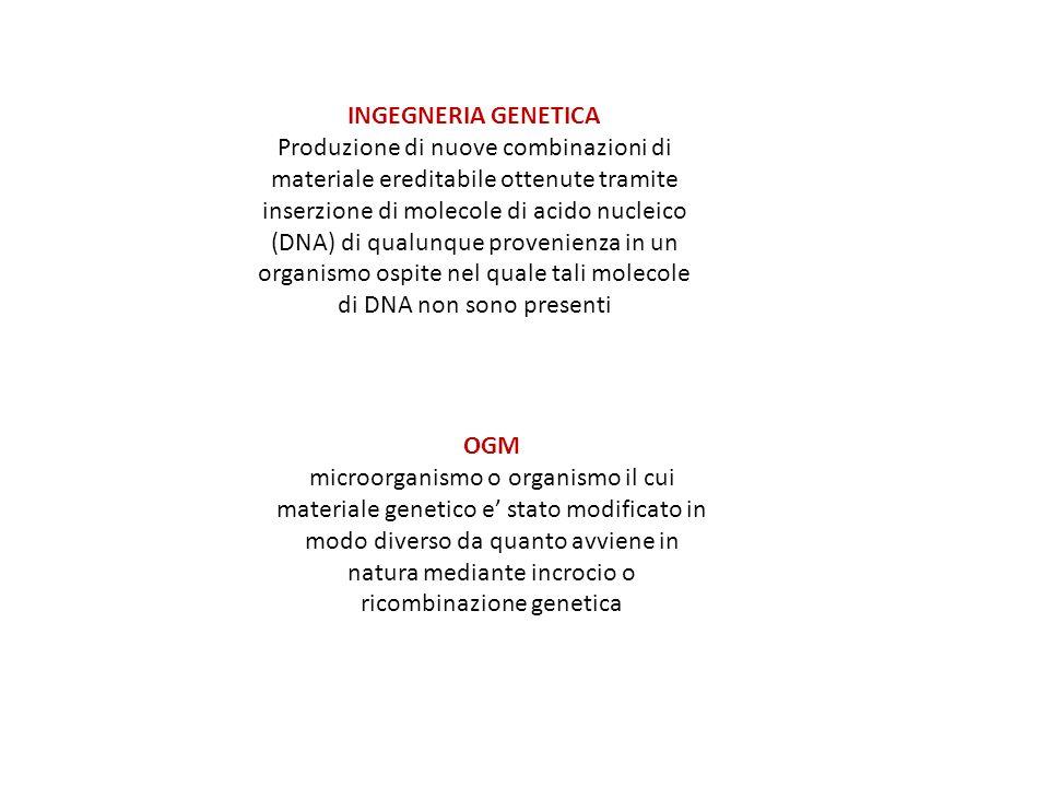 INSERIMENTO DI DNA ESOGENO NELLE CELLULE Nella trasformazione la cellula donatrice libera molecole di DNA che racchiudono la sua informazione genetica (in questo caso un plasmide ricombinante) e alcune delle molecole vengono assunte dalla cellula ricevente (in questo caso il batterio Escherichia coli).