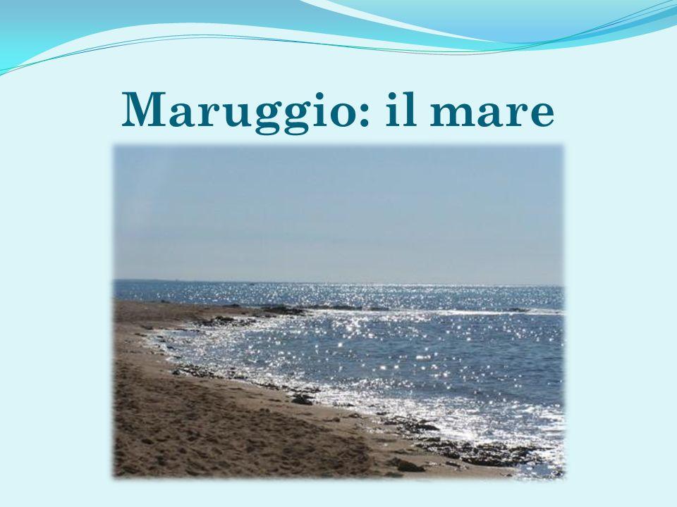Maruggio: il mare
