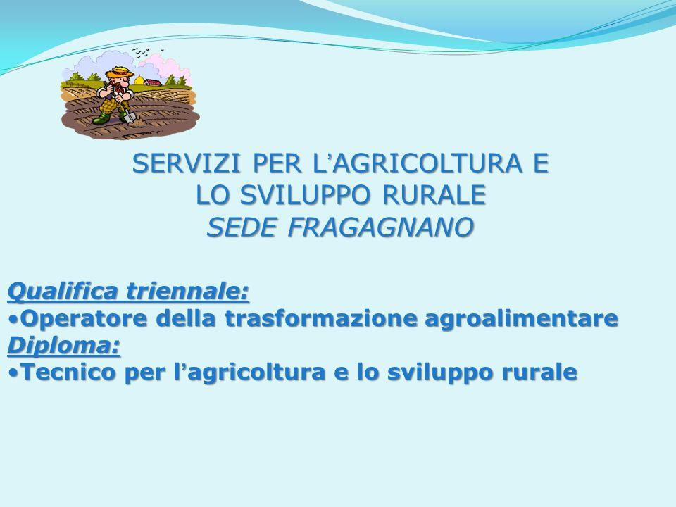 SERVIZI PER L AGRICOLTURA E LO SVILUPPO RURALE SEDE FRAGAGNANO Qualifica triennale: Operatore della trasformazione agroalimentareOperatore della trasf