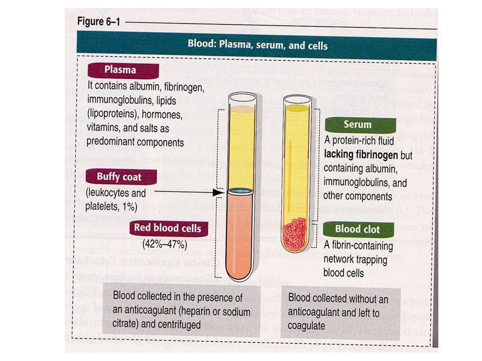 Il plasma è un fluido leggermente alcalino (pH 7,4), con caratteristico colore giallino, costituito per il 90 % da acqua e per il 10 % da sostanza secca La sostanza secca è formata al 90% da sostanze organiche ÷glucidi (glucosio) ÷lipidi (colesterolo, trigliceridi, fosfolipidi, lecitina, grassi), proteine (globuline, albumine, fibrinogeno) ÷glicoproteine ÷ormoni (gonadotropine, eritropoietina, trombopoietina) ÷amminoacidi ÷vitamine mentre il 10% è costituita da minerali, dissolti sotto forma ionica, cioè dissociate in ioni positivi e negativi Per ottenere il plasma bisogna aggiungere al sangue contenuto in una provetta, una sostanza anticoagulante e sottoporre il campione a centrifugazione; in questa maniera la parte corpuscolata si deposita sul fondo della provetta e sopra questa abbiamo un fluido che e il plasma.