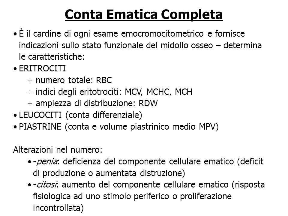 Conta Ematica Completa È il cardine di ogni esame emocromocitometrico e fornisce indicazioni sullo stato funzionale del midollo osseo – determina le c