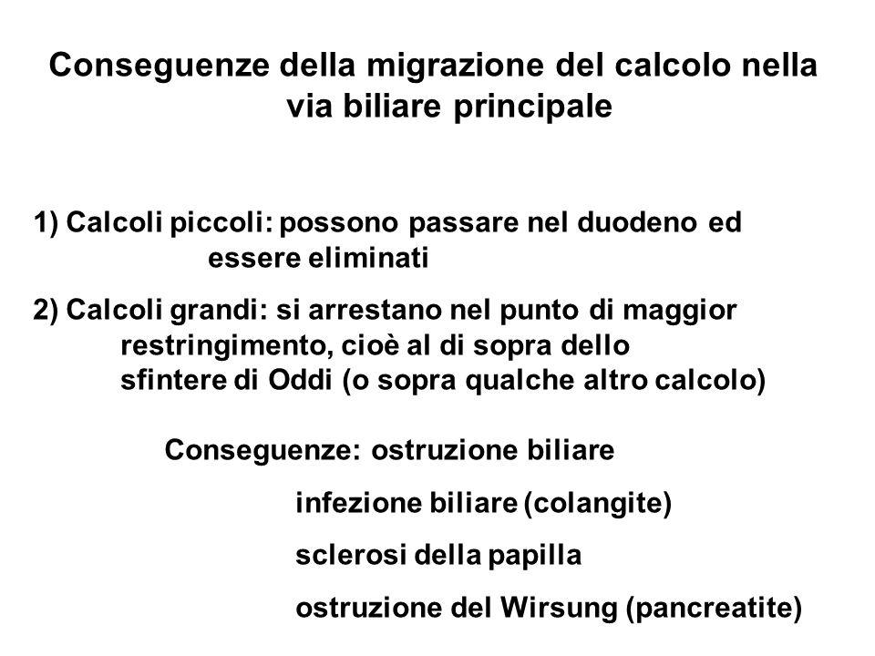Conseguenze della migrazione del calcolo nella via biliare principale 1)Calcoli piccoli: possono passare nel duodeno ed essere eliminati 2)Calcoli gra