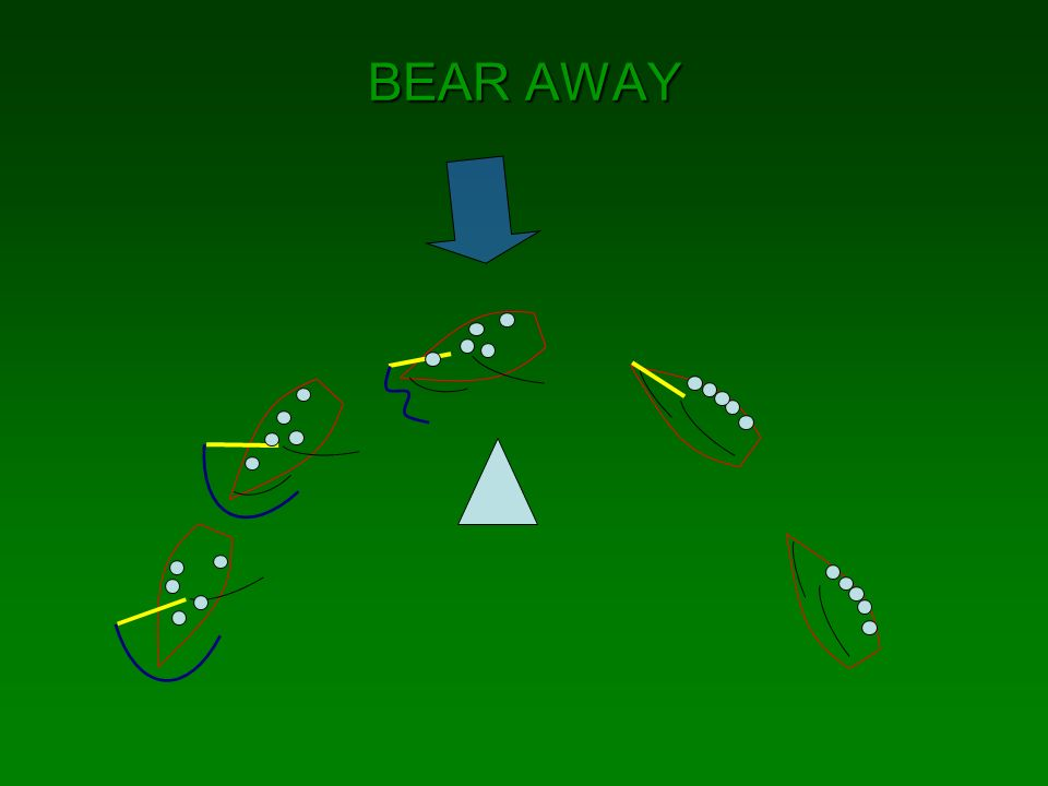 BEAR AWAY