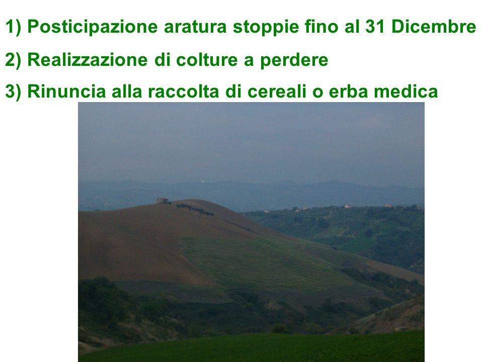 1) Posticipazione aratura stoppie fino al 31 Dicembre 2) Realizzazione di colture a perdere 3) Rinuncia alla raccolta di cereali o erba medica