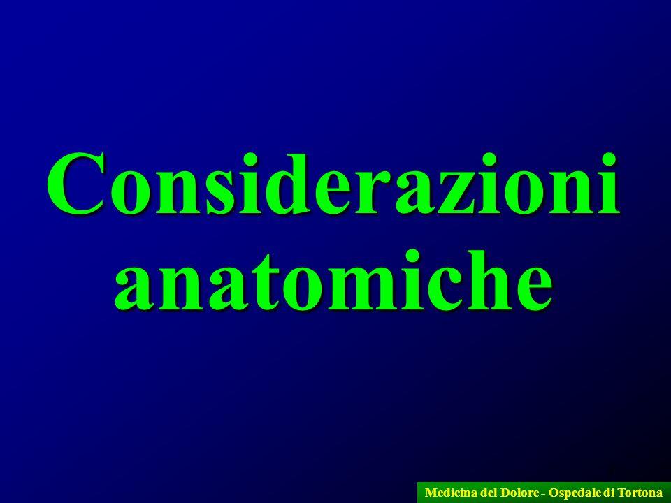 3 Considerazioni anatomiche Medicina del Dolore - Ospedale di Tortona