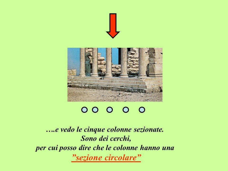 ….e vedo le cinque colonne sezionate. Sono dei cerchi, per cui posso dire che le colonne hanno una sezione circolare