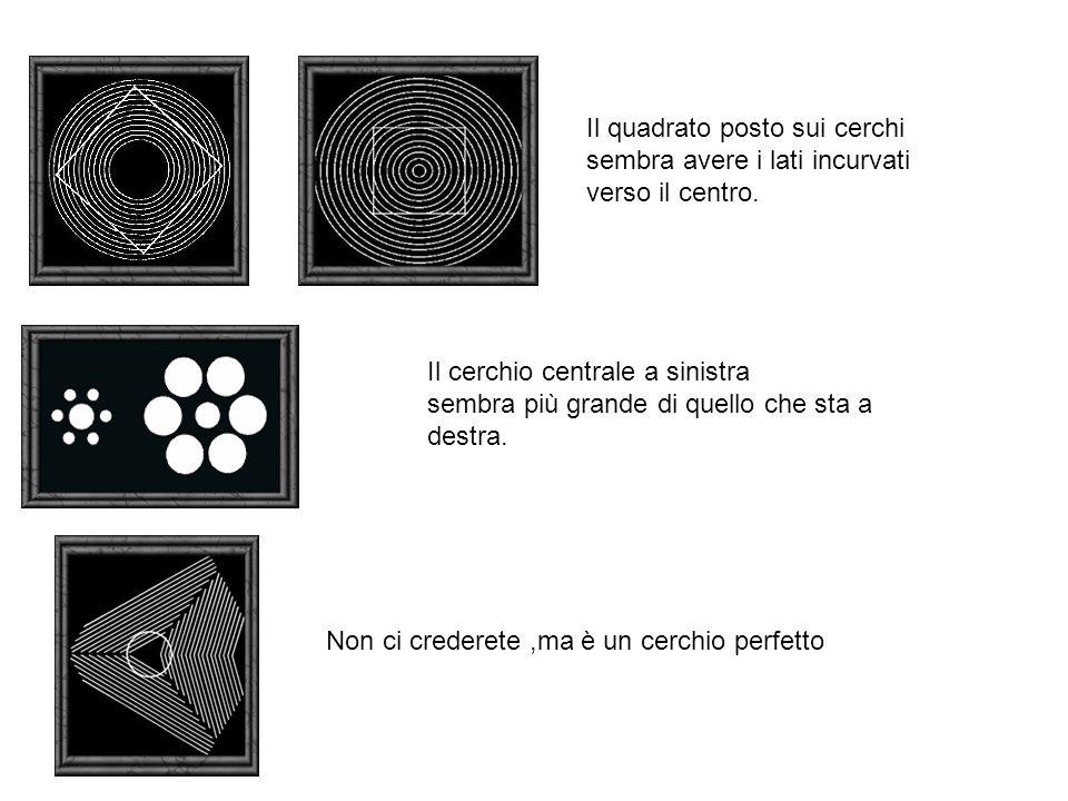 Il quadrato posto sui cerchi sembra avere i lati incurvati verso il centro. Il cerchio centrale a sinistra sembra più grande di quello che sta a destr
