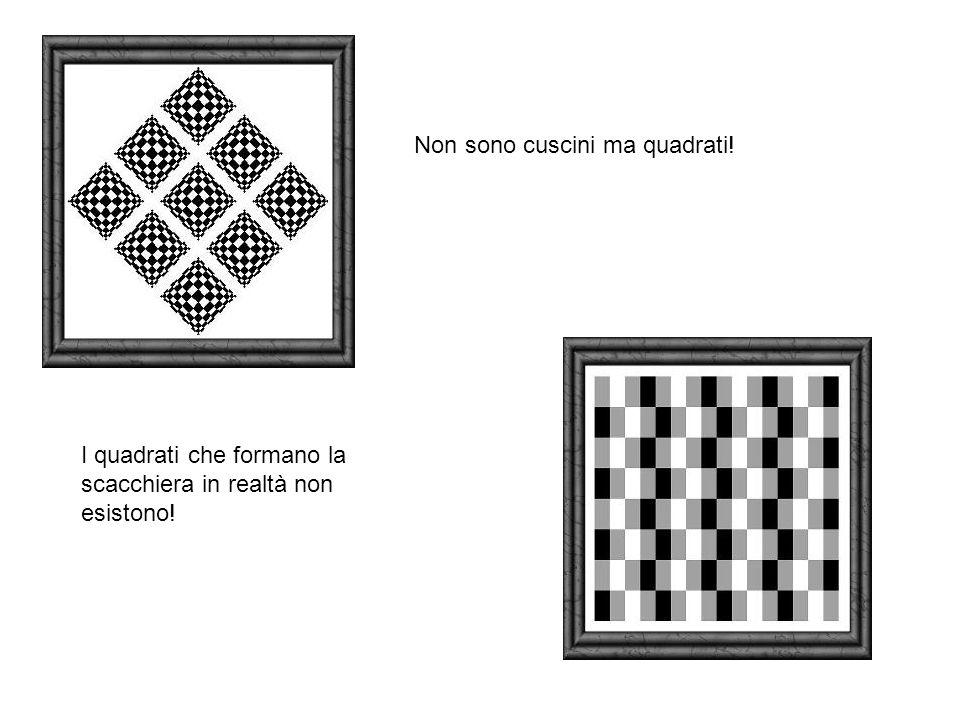 Non sono cuscini ma quadrati! I quadrati che formano la scacchiera in realtà non esistono!