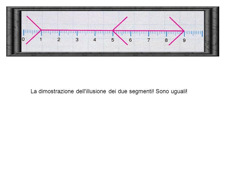 La dimostrazione dell'illusione dei due segmenti! Sono uguali!La dimostrazione dell'illusione dei due segmenti! Sono uguali! La dimostrazione dell'ill