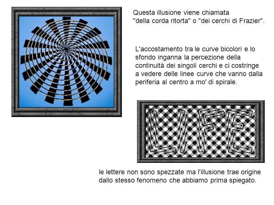 Questa illusione viene chiamata della corda ritorta o dei cerchi di Frazier .