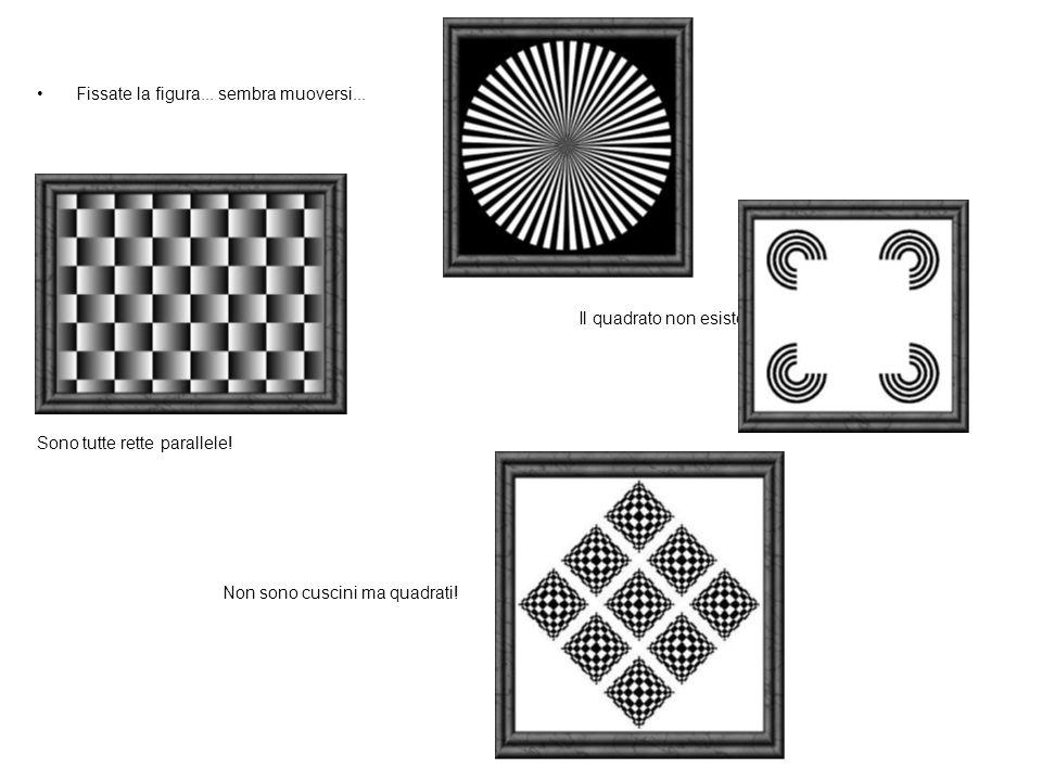 Fissate la figura...sembra muoversi... Il quadrato non esiste.