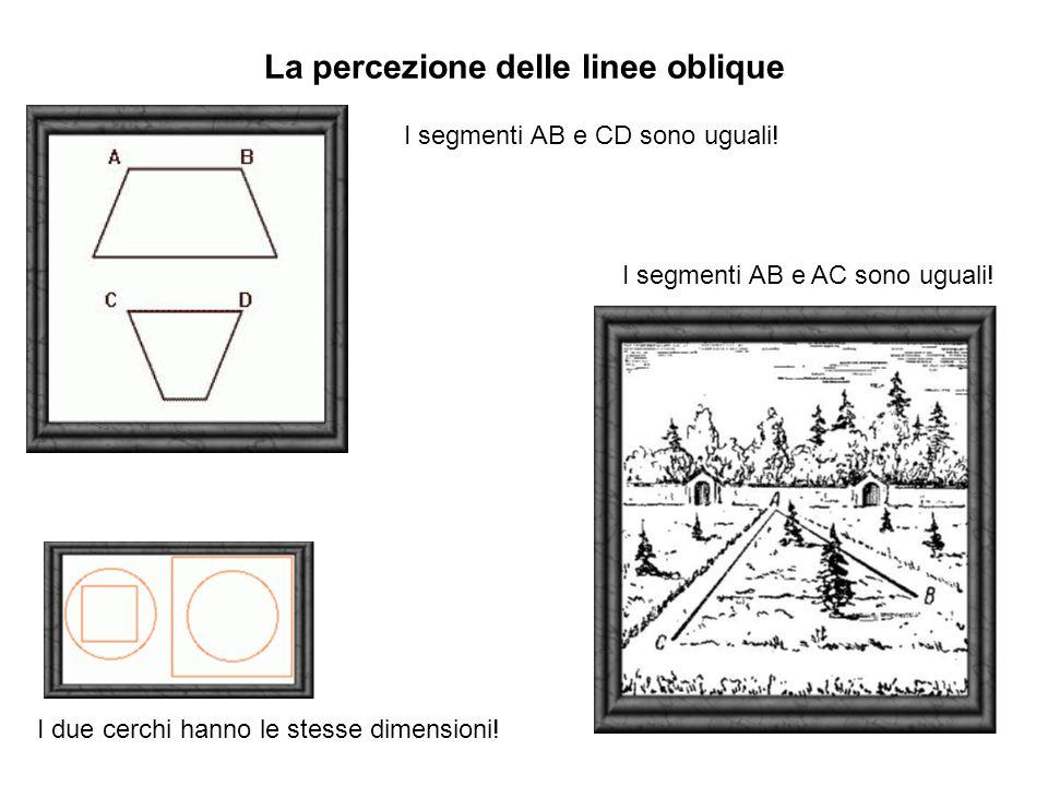 La percezione delle linee oblique I segmenti AB e CD sono uguali.