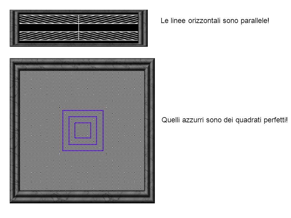 Le linee orizzontali sono parallele! Quelli azzurri sono dei quadrati perfetti!