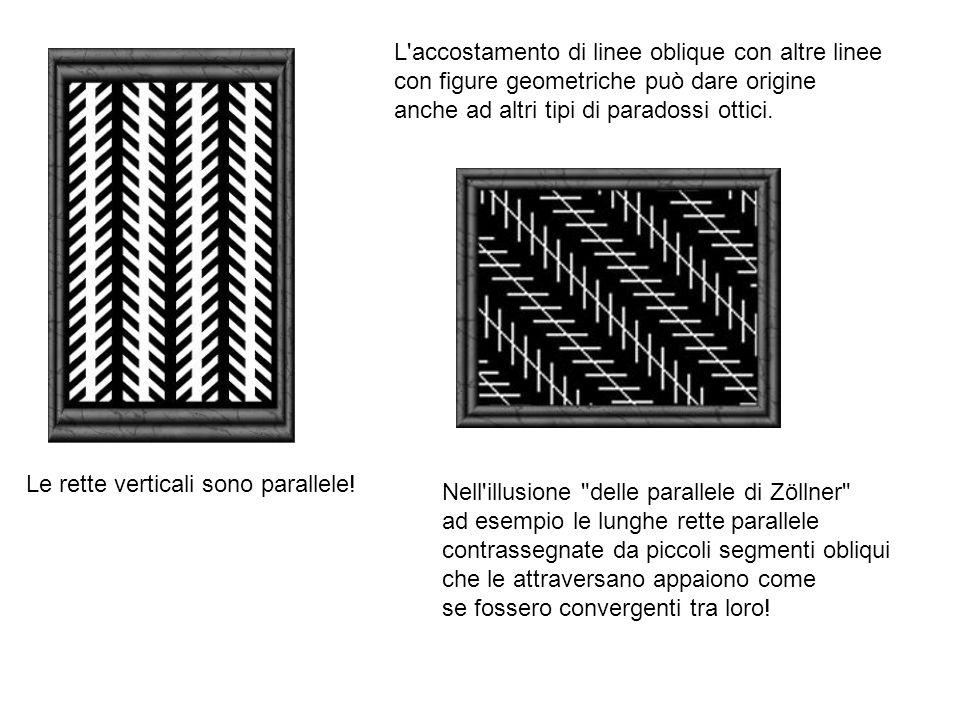 Le rette verticali sono parallele.