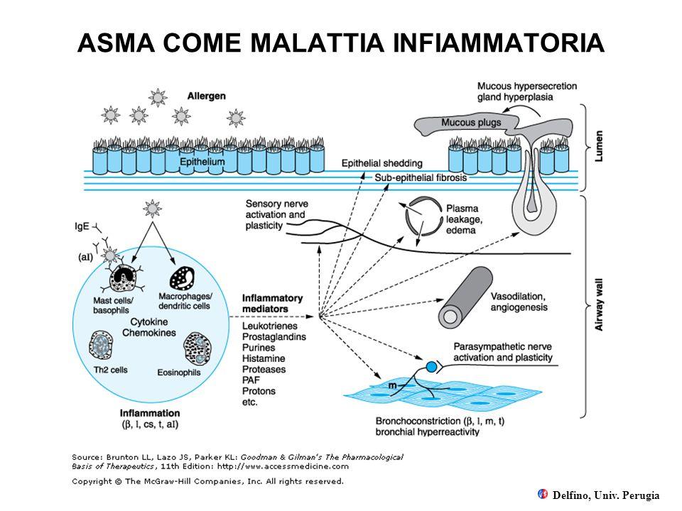 ASMA COME MALATTIA INFIAMMATORIA Delfino, Univ. Perugia