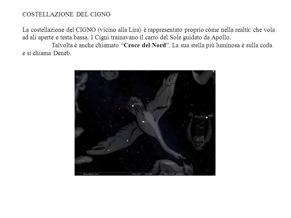 COSTELLAZIONE DEL CIGNO La costellazione del CIGNO (vicino alla Lira) è rappresentato proprio come nella realtà: che vola ad ali aperte e testa bassa.