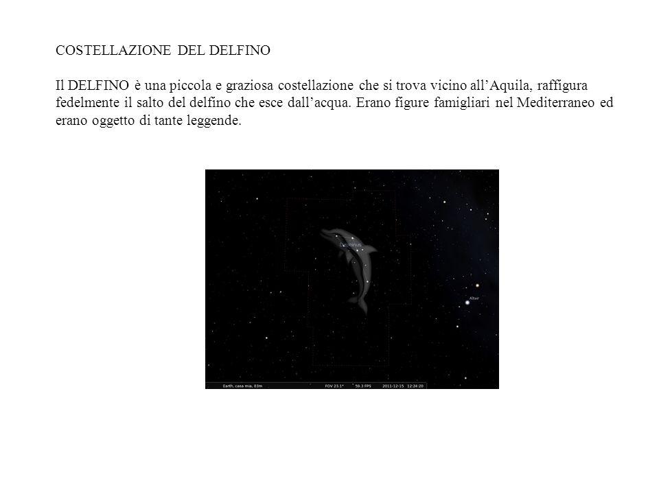 COSTELLAZIONE DEL DELFINO Il DELFINO è una piccola e graziosa costellazione che si trova vicino allAquila, raffigura fedelmente il salto del delfino c