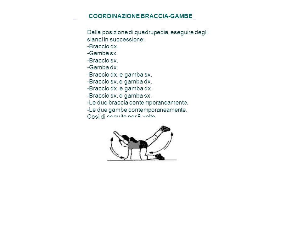 COORDINAZIONE BRACCIA-GAMBE Dalla posizione di quadrupedia, eseguire degli slanci in successione: -Braccio dx. -Gamba sx -Braccio sx. -Gamba dx. -Brac