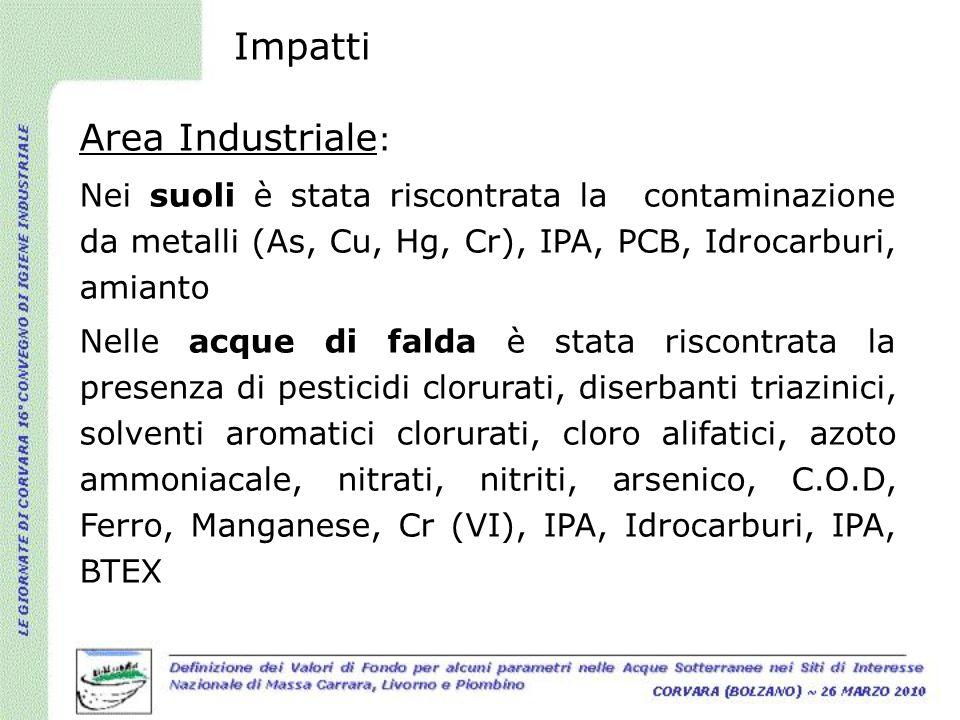 Impatti Area Industriale : Nei suoli è stata riscontrata la contaminazione da metalli (As, Cu, Hg, Cr), IPA, PCB, Idrocarburi, amianto Nelle acque di
