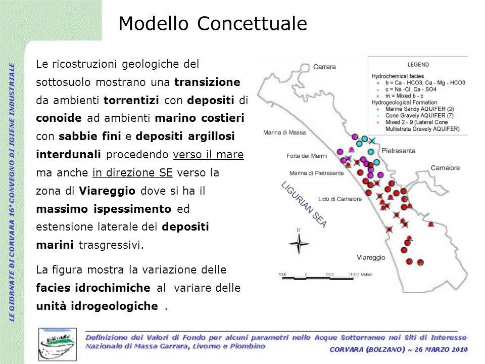 Le ricostruzioni geologiche del sottosuolo mostrano una transizione da ambienti torrentizi con depositi di conoide ad ambienti marino costieri con sab