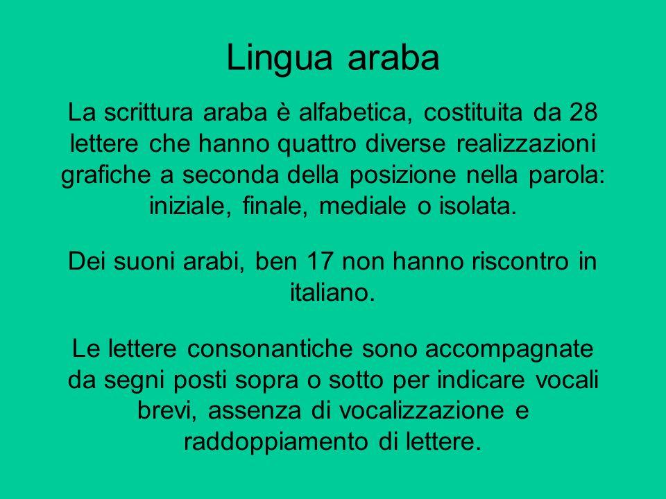 Lingua araba La scrittura araba è alfabetica, costituita da 28 lettere che hanno quattro diverse realizzazioni grafiche a seconda della posizione nell