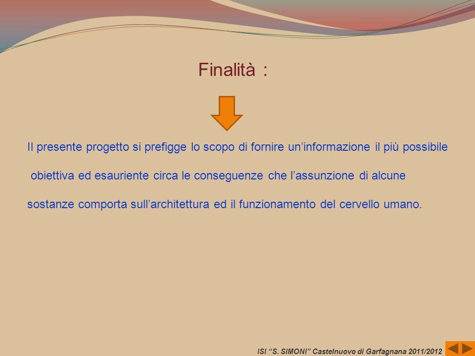 ISI S. SIMONI Castelnuovo di Garfagnana 2011/2012 Il presente progetto si prefigge lo scopo di fornire uninformazione il più possibile obiettiva ed es