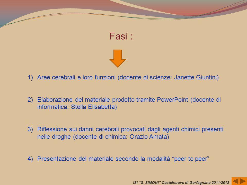 ISI S. SIMONI Castelnuovo di Garfagnana 2011/2012 1) Aree cerebrali e loro funzioni (docente di scienze: Janette Giuntini) 2) Elaborazione del materia