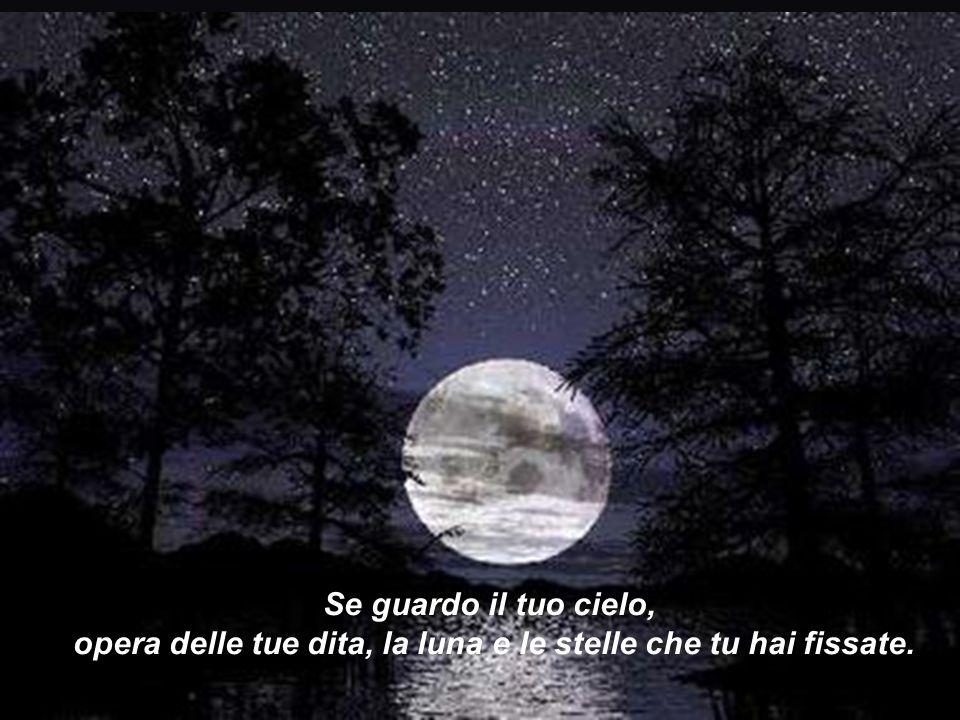 Se guardo il tuo cielo, opera delle tue dita, la luna e le stelle che tu hai fissate.