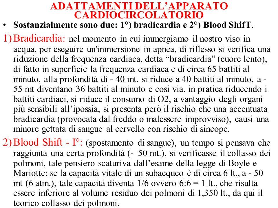 13 ADATTAMENTI DELLAPPARATO CARDIOCIRCOLATORIO Sostanzialmente sono due: 1°) bradicardia e 2°) Blood ShifT. 1)Bradicardia: nel momento in cui immergia