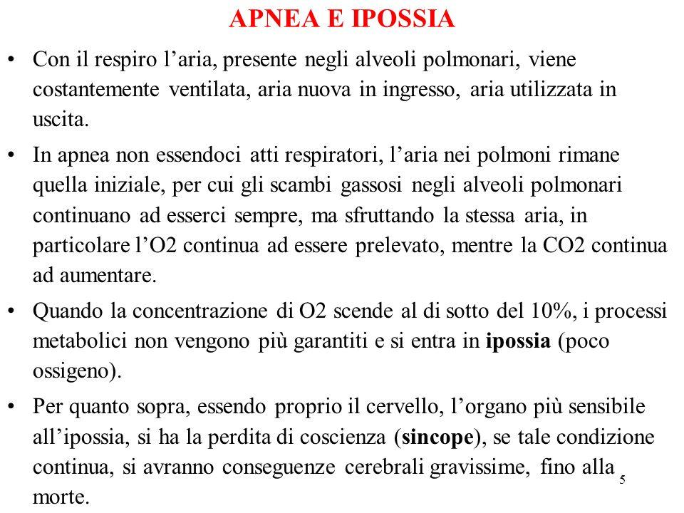 5 APNEA E IPOSSIA Con il respiro laria, presente negli alveoli polmonari, viene costantemente ventilata, aria nuova in ingresso, aria utilizzata in uscita.