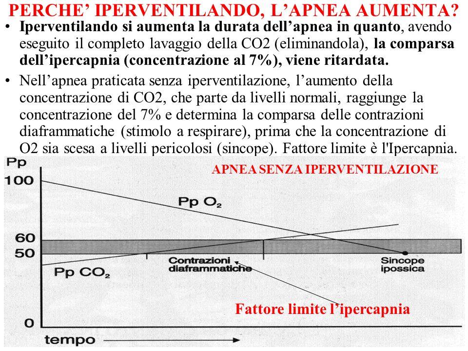 9 PERCHE IPERVENTILANDO, LAPNEA AUMENTA? Iperventilando si aumenta la durata dellapnea in quanto, avendo eseguito il completo lavaggio della CO2 (elim