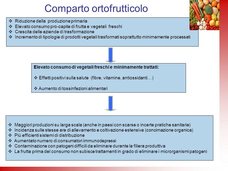 Comparto ortofrutticolo Riduzione della produzione primaria Elevato consumo pro-capite di frutta e vegetali freschi Crescita delle aziende di trasform