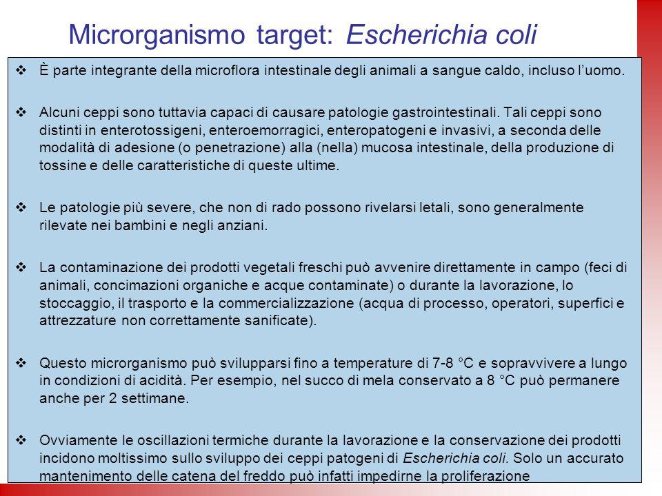 È parte integrante della microflora intestinale degli animali a sangue caldo, incluso luomo. Alcuni ceppi sono tuttavia capaci di causare patologie ga