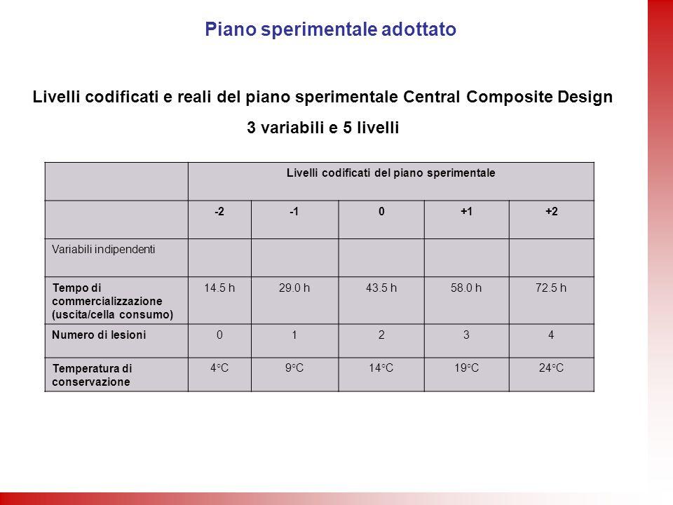 Piano sperimentale adottato Livelli codificati del piano sperimentale -20+1+2 Variabili indipendenti Tempo di commercializzazione (uscita/cella consum