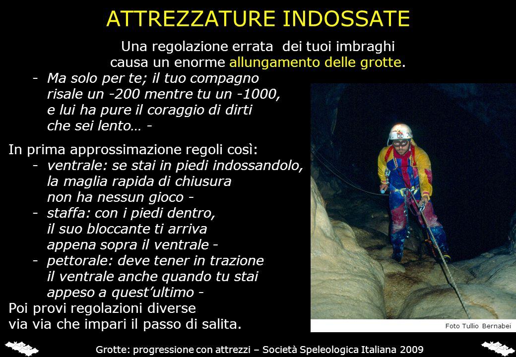 PER SAPERNE DI PIU ANTONINI G.& BADINO G. (1997), Grotte e Forre.