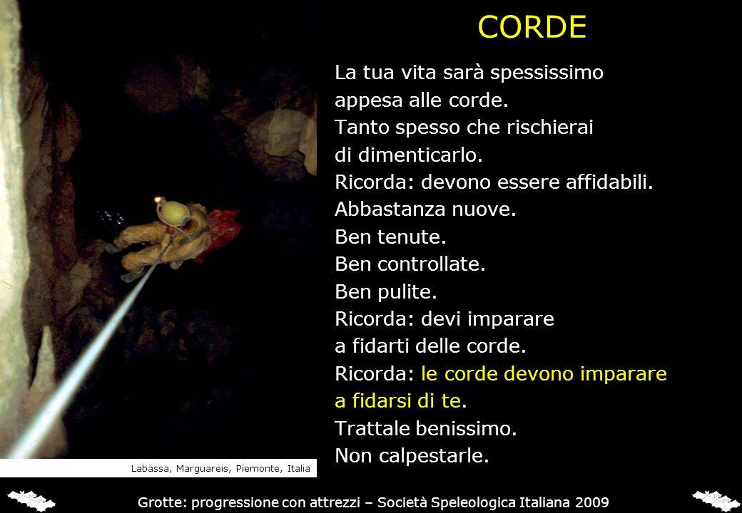 CREDITI Questa lezione è stata coordinata da Giovanni Badino.