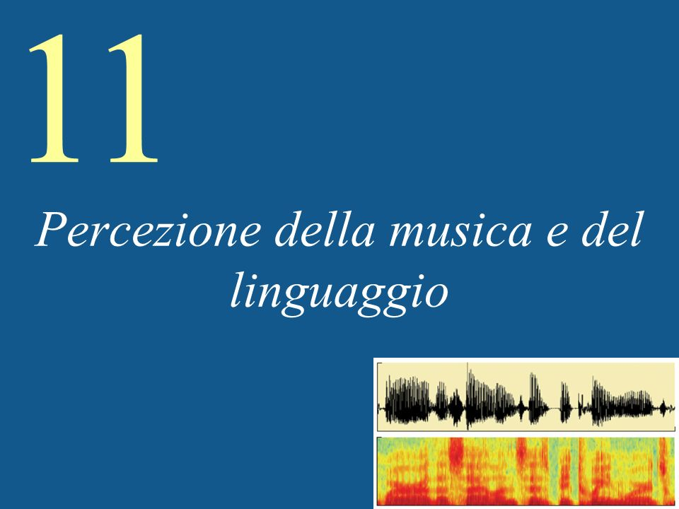 11 Speech (contd) Usare indici acustici multipli –La percezione dipende dallesperienza –Un buon paragone è con la percezione di facce