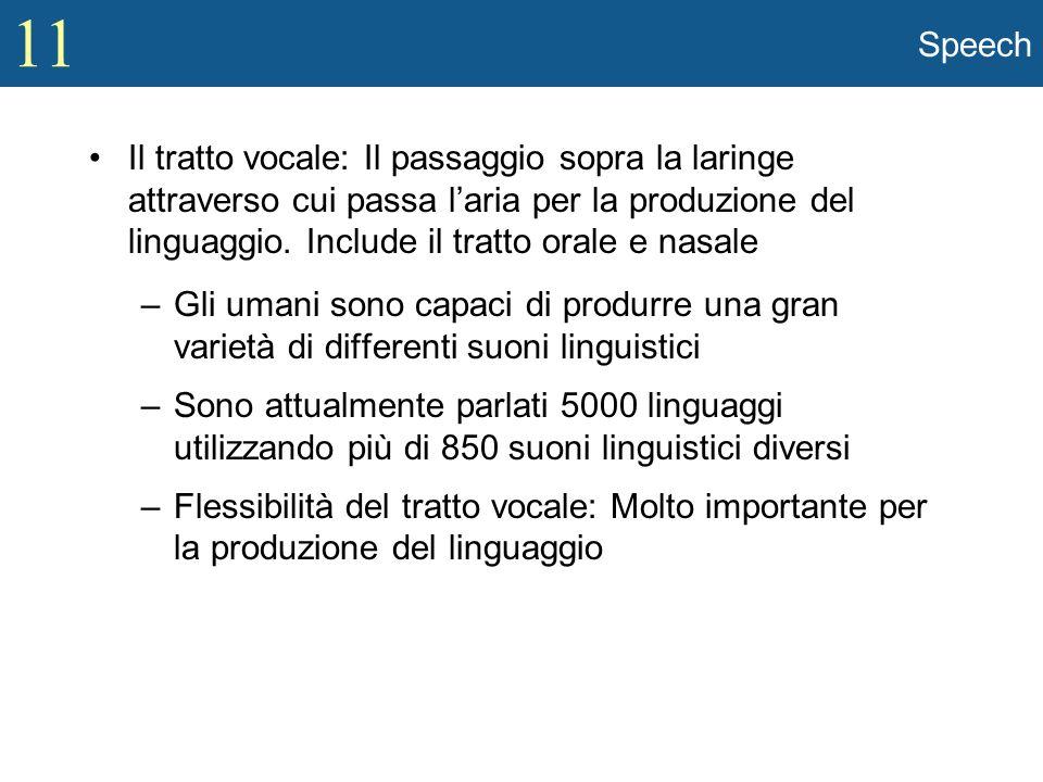 11 Speech Il tratto vocale: Il passaggio sopra la laringe attraverso cui passa laria per la produzione del linguaggio. Include il tratto orale e nasal