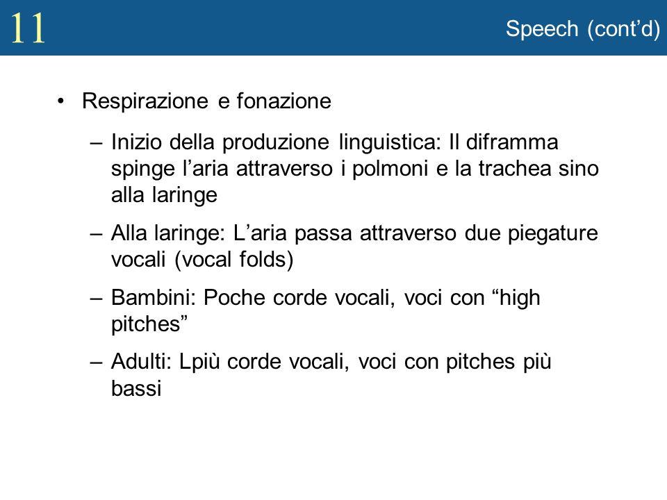 11 Speech (contd) Respirazione e fonazione –Inizio della produzione linguistica: Il diframma spinge laria attraverso i polmoni e la trachea sino alla