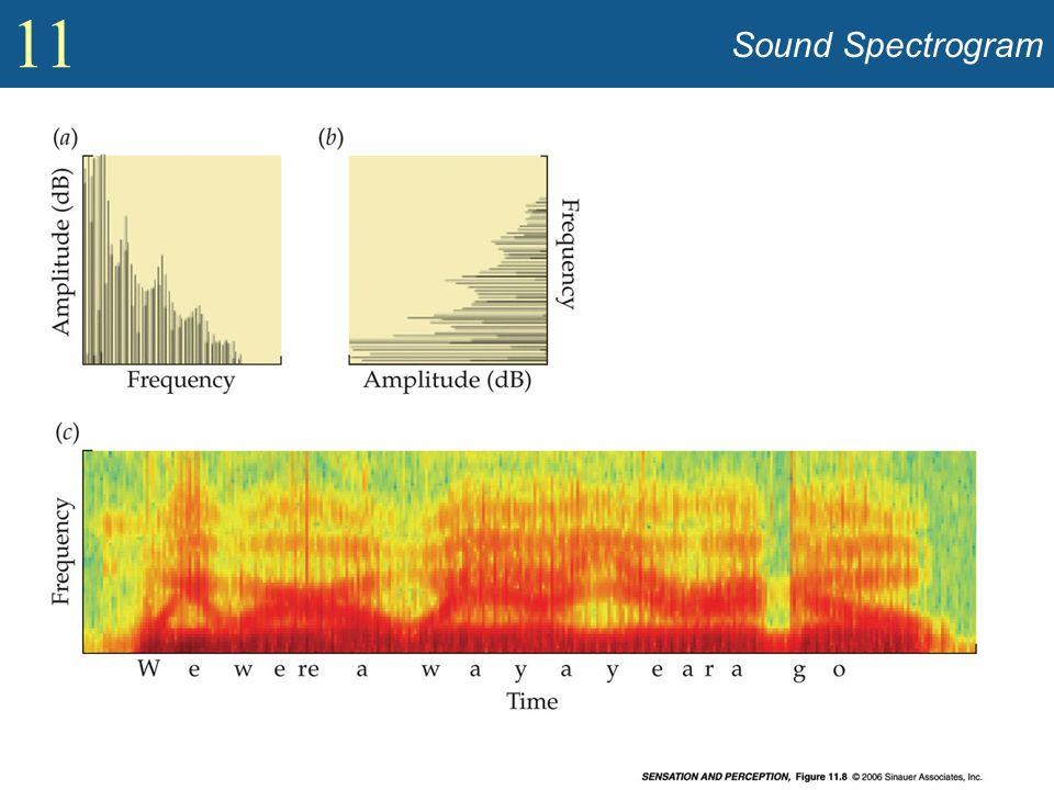 11 Sound Spectrogram