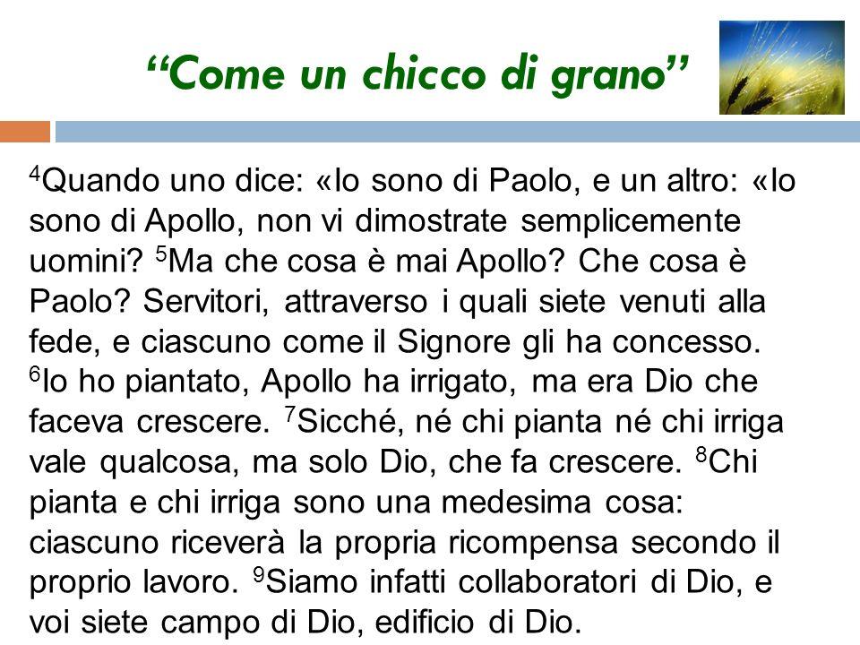 Come un chicco di grano 4 Quando uno dice: «Io sono di Paolo, e un altro: «Io sono di Apollo, non vi dimostrate semplicemente uomini? 5 Ma che cosa è