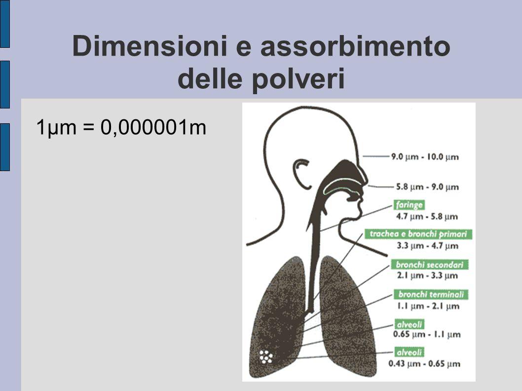Dimensioni e assorbimento delle polveri 1μm = 0,000001m