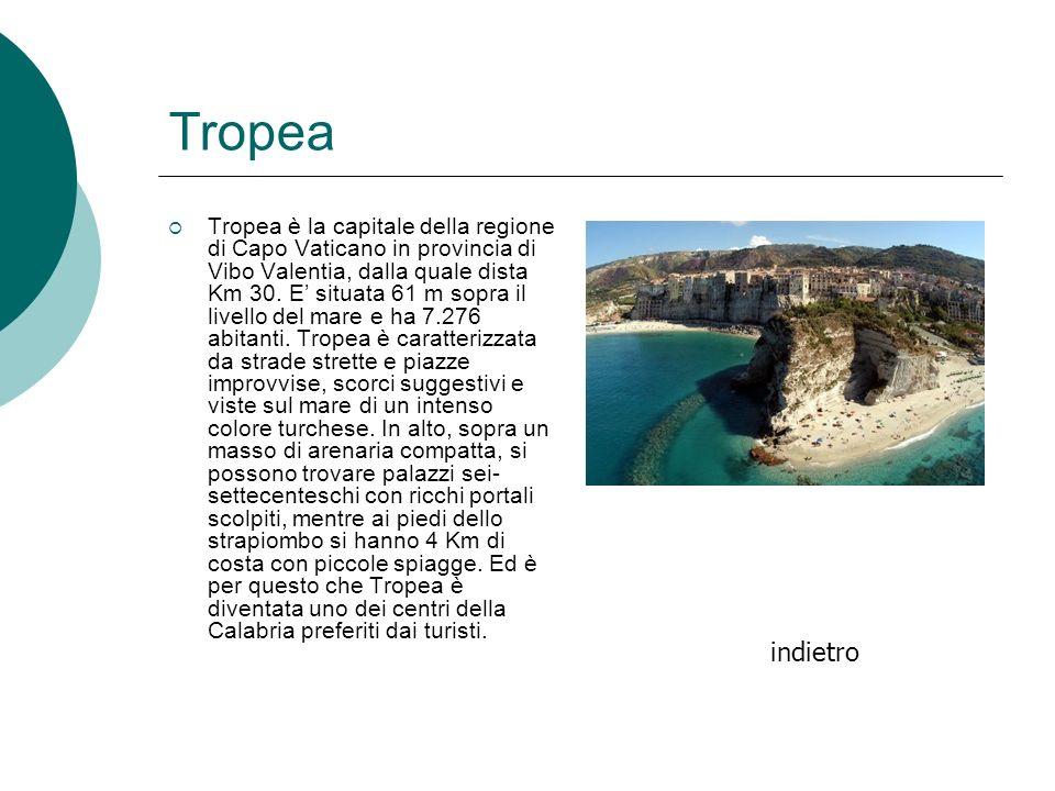 Tropea Tropea è la capitale della regione di Capo Vaticano in provincia di Vibo Valentia, dalla quale dista Km 30. E situata 61 m sopra il livello del
