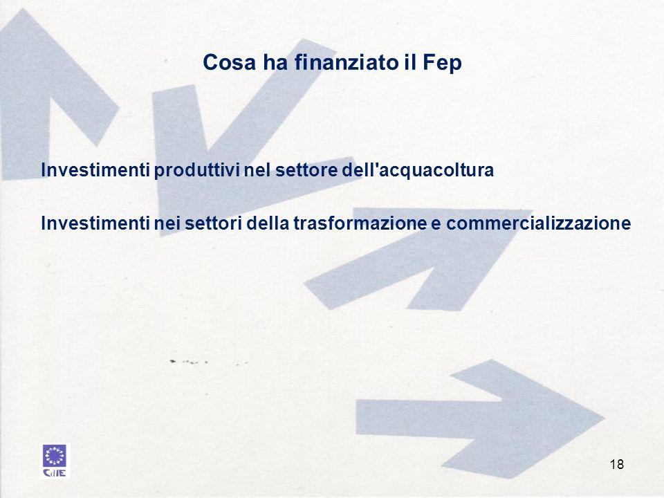 Cosa ha finanziato il Fep Investimenti produttivi nel settore dell acquacoltura Investimenti nei settori della trasformazione e commercializzazione 18