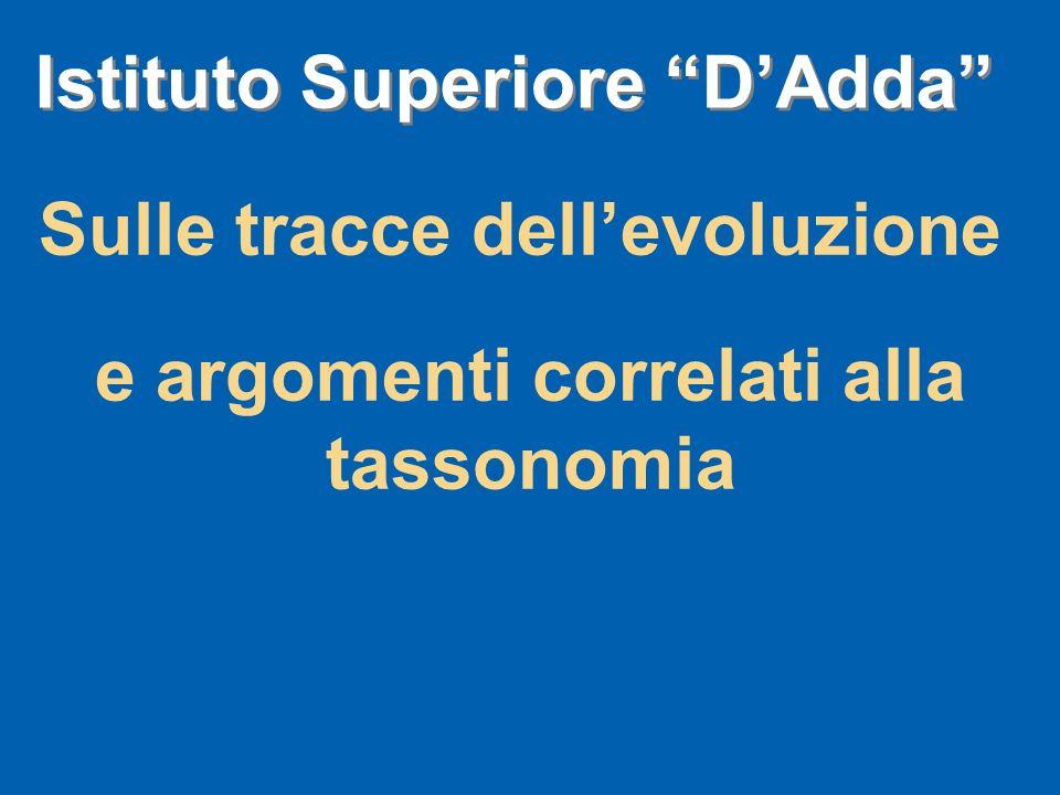 Sulle tracce dellevoluzione e argomenti correlati alla tassonomia Istituto Superiore DAdda