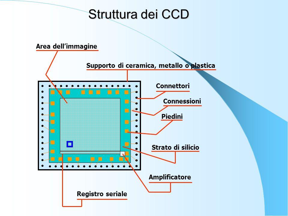 Connettori Connessioni Piedini Strato di silicio Supporto di ceramica, metallo o plastica Area dellimmagine Registro seriale Amplificatore Struttura d